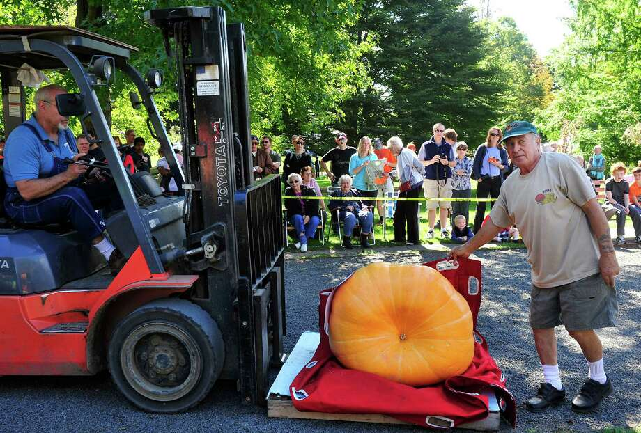 Ed Giarrusso, right, guides a 319 pound pumpkin to the scale as the Connecticut Giant Pumpkin Growers Club holds their annual Giant Pumpkin and Squash Weighoff in Ridgefield, Conn. Sunday, Sept. 29, 2013. Photo: Michael Duffy / The News-Times
