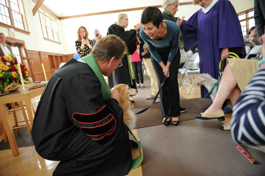 The Rev. Dr. Edward G. Horstmann blesses Savannah, a golden retriever, while owner Elise Regan watches at Round Hill Community annual Blessing of the Animals, in Greenwich, Conn., Sunday, Sept. 29, 2013. Photo: Helen Neafsey / Greenwich Time