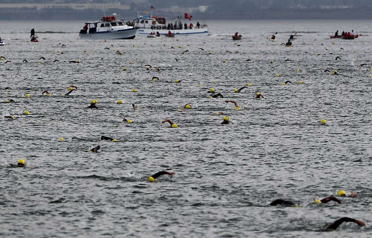 Hundreds of swimmers in the Alcatraz Invitational Swim made their way to shore Sunday September 29, 2013 in San Francisco, Calif. A small group of blind people from the Foundation for Blind Children joined the annual Alcatraz Invitational Swim sponsored by the South End Rowing Club, becoming the first group of sightless people to swim from the rock to the San Francisco shoreline.