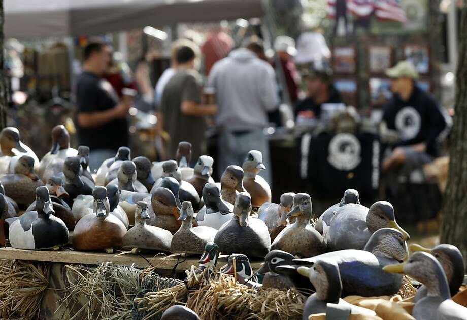 Carved duck decoys appear on display at the 31st Annual Ocean County Decoy & Gunning Show in Tuckerton, N.J., Sunday, Sept. 29, 2013. The event celebrates the culture of the area with waterfowling exhibitors, antique collectible decoys, skeet shooting, local seafood, carvers, dock dog races, etc. (AP Photo/Mel Evans) Photo: Mel Evans, Associated Press