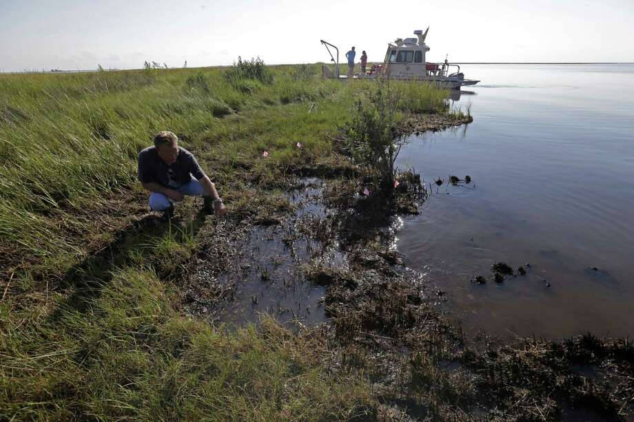 PJ Hahn, Coastal Zone Manager for Plaquemines Parish, examines oil along the shoreline of Bay Jimmy, which was heavily impacted by the Deepwater Horizon oil spill, in Plaquemines Parish, La., Friday, Sept. 27, 2013. The methods that BP employed during its 86-day struggle to stop oil gushing into the Gulf of Mexico will be the focus of a trial resuming Monday, Sept. 30, 2013 in New Orleans, in the high-stakes litigation spawned by the worst offshore spill in the United States. Photo: Gerald Herbert
