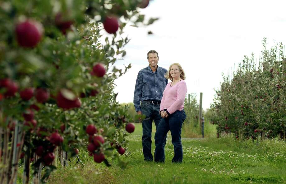 Cornell University research specialist, Kevin Maloney, left, and apple breeding program leader, Dr. Susan Brown, stand in an apple orchard at the Cornell University Fruit and Vegetable Research Farm in Geneva, N.Y., Monday, Sept. 23, 2013. The orchards, part of the New York State Agricultural Experiment        Station, are essentially a 50-acre lab devoted to developing apples that        are tasty for consumers and hardy for farmers. The station has released        66 apple varieties over more than a century including Cortland, Macoun        and two new entries at farm markets this fall: SnapDragon and RubyFrost. (AP Photo/Heather Ainsworth)   ORG XMIT: NYHA201 Photo: Heather Ainsworth, AP / FR120665 AP