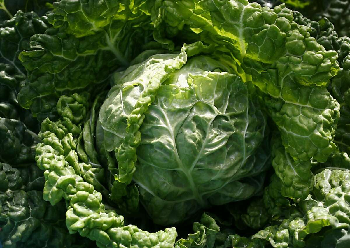 Heavily textured, nutritious Savoy cabbage is pretty enough to show off in a flower bed.