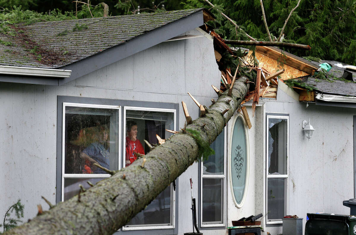 Mary Hursh, left, and Catarina Schulte, right, look out the window of their home in the Frederickson neighborhood near Puyallup, Wash. at a tree that fell on their roof after a tornado moved through the area earlier in the day Monday, Sept. 30, 2013.