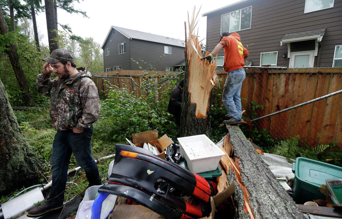 Paxton Hursh, left, and Shawn Pellard, working for Woodland Industries Tree Experts, examine the base of a large tree that snapped completely off after a tornado moved through the area earlier in the day in the Frederickson neighborhood near Puyallup, Wash. on Monday, Sept. 30, 2013. An early winter storm dumped record amounts of rain and knocked out power for thousands in the Pacific Northwest.