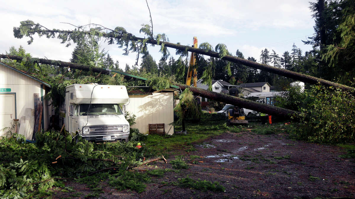 Trees that fell on outbuildings and a trailer when a tornado passed through the area earlier in the day are shown Monday, Sept. 30, 2013 in the Frederickson neighborhood near Puyallup, Wash. Several dozen homes were damaged in the storm.