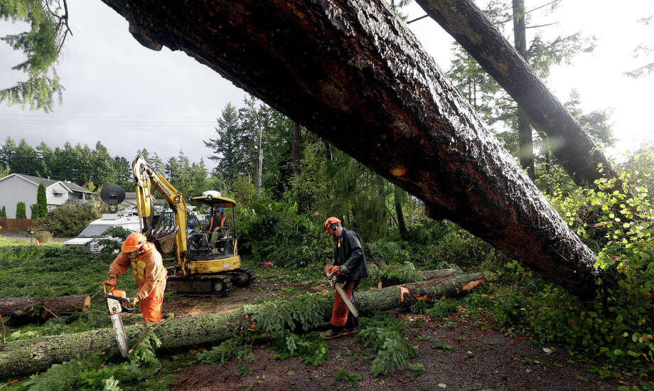 Workers with Woodland Industries Tree Experts work to clear trees that fell earlier in the day when a tornado moved through the Frederickson neighborhood near Puyallup, Wash., Monday, Sept. 30, 2013. Photo: Ted S. Warren, Associated Press / Associated Press