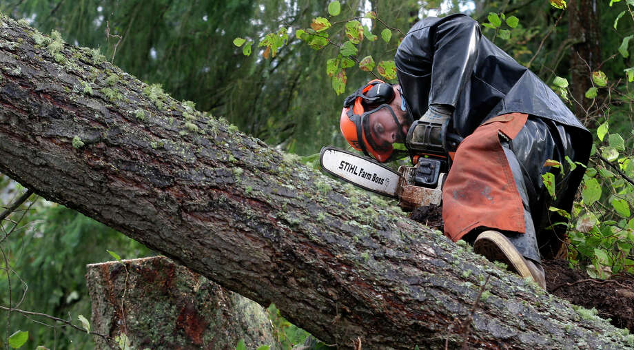 Brian Hall, working for Woodland Industries Tree Experts, uses a chain saw to cut a tree that fell in the Frederickson neighborhood near Puyallup, Wash., Monday, Sept. 30, 2013 when a tornado moved through the area earlier in the day.  Photo: Ted S. Warren, Associated Press / Associated Press