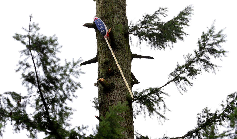 A flag and pole hangs approximately 40 feet high in a tree on a lot owned by Alan Hursh in the Frederickson neighborhood near Puyallup, Wash., Monday, Sept. 30, 2013. The flag became lodged when a tornado moved through the area earlier in the day. Photo: Ted S. Warren, Associated Press / Associated Press