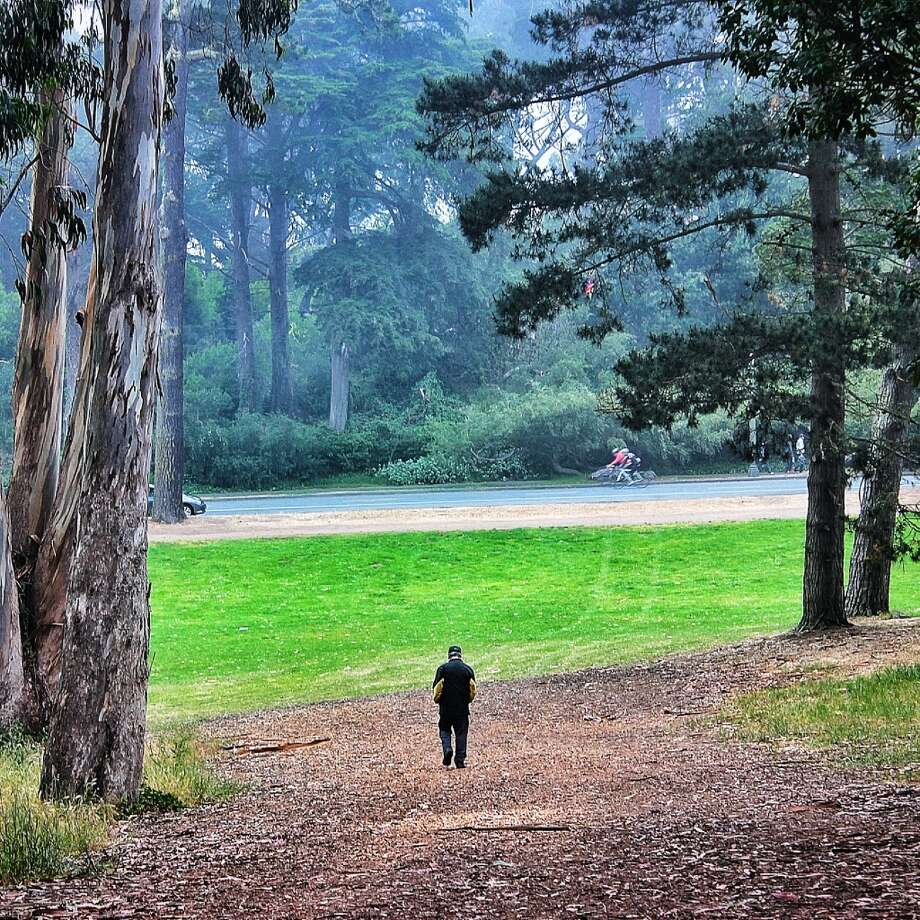 "Nixon Lam lives in San Francisco, and Instagrams as Nixpixl. ""I passed this elderly gentleman on the path between Speedway Meadow and the Polo Field.  I turned to watch him pass and was struck by how the tall trees towered over this solitary figure."""
