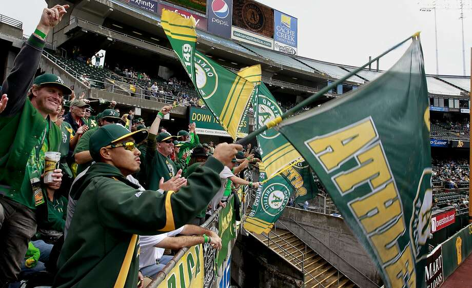 "The right field section of fans including Andy ""right filed drummer"" Cho, (front)   cheer on the Oakland Athletics as they take on the Minnesota Twins on Saturday Sept. 21, 2013, in Oakland, Calif., at O.co Coliseum. Photo: Michael Macor, The Chronicle"