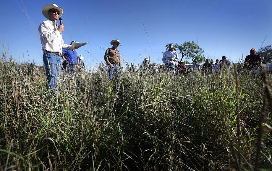 "Kason Haby, left, District Conservationist with Natural Resources Conservation Service, talks to land owners and conservationists about native plant restoration at Dobie Ranch in Live Oak County, where gas and oil lines have been given right of way, on Tuesday, Sept. 24, 2013. The ""field day"" several groups including the U.S. Department of Agriculture's Natural Resources Conservation Service, Texas A&M Agrilife Extension, Caesar Kleberg Wildlife Research Institute and South Texas Natives. Photo: San Antonio Express-News"