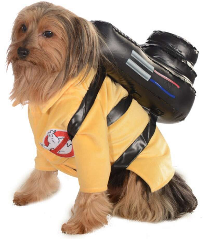 No. 8Ghost Buster, for the dog who can't stop wishing it was the '80s again.