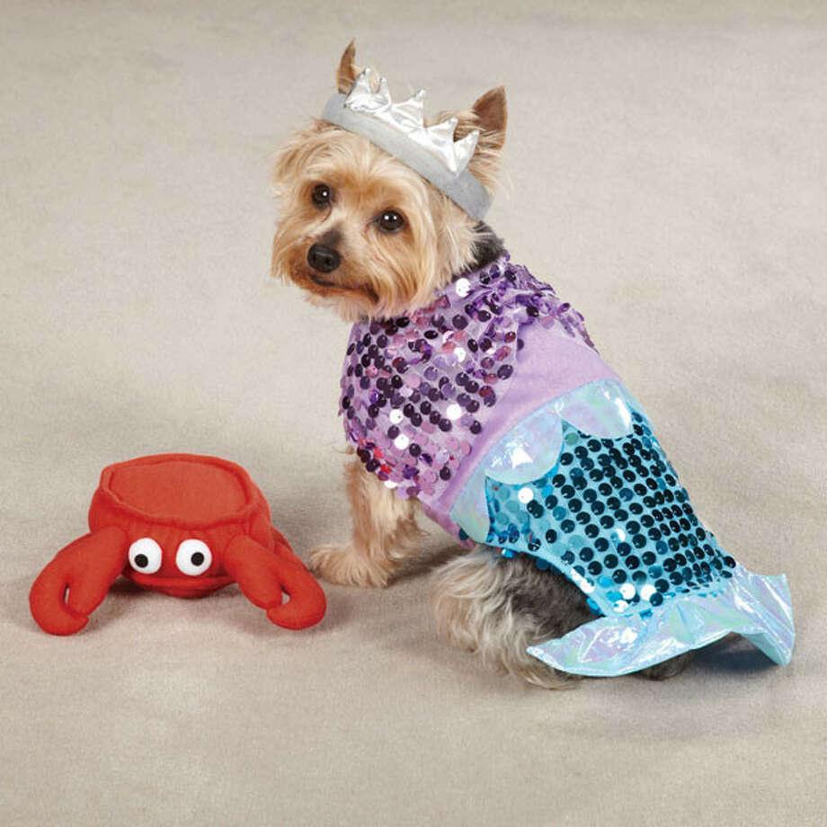 If you're going to be a mermaid, it has to be a sparkly mermaid.