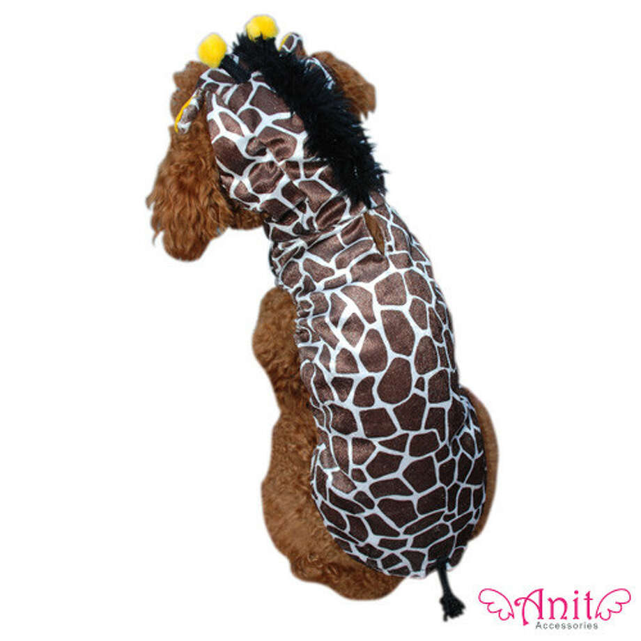 Giraffes have never looked so un-giraffe-like before.