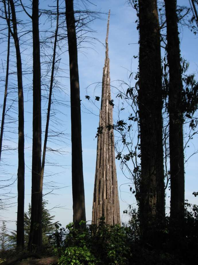 """Spire"", Andy Goldsworthy's original Presidio installation. Photo: John King"