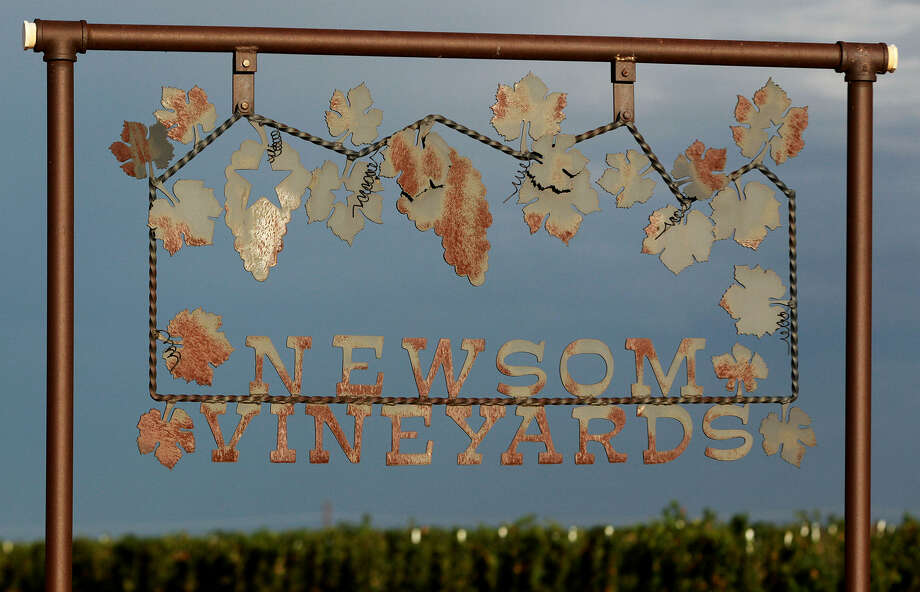 Newsom Vineyards near Plains has planted 137 acres of grapevines for wineries all around the state. Owner Neal Newsom is working with his son, Nolan, who is part of the next generation of grape growers. Photo: Photos By John Davenport / San Antonio Express-News