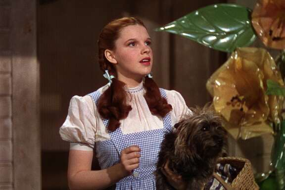 "Judy Garland  in ""The Wizard of Oz."" Five of the last six.  Classic?  Duh."