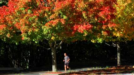 file photo 10/21/2007 A runner enjoys a beautiful fall day on Brookside Drive in Fairfield Connecticut.
