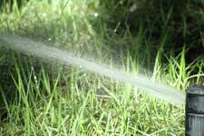 Gardeners, like all residents, have been affected by water mandates. A ballot initiative calls for state funding for water projects.