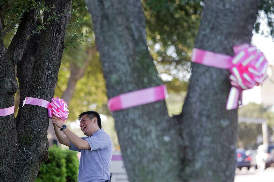 Gerardo Rosales places pink ribbons on trees outside of America Tower along Allen Parkway at Waugh as a group decorated the trees along the race route for the Susan G. Komen Race for the Cure Friday, Oct. 4, 2013, in Houston. Photo: Johnny Hanson, Houston Chronicle / Houston Chronicle