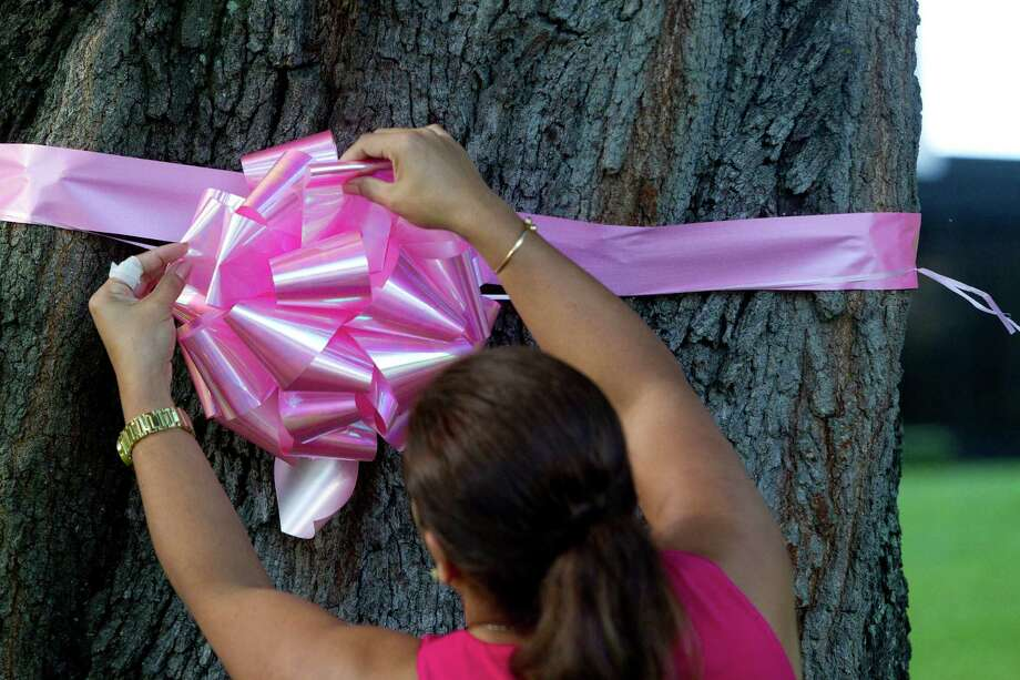 Rosie Villegas places pink ribbons outside of the American General Center along Allen Parkway near Waugh. Photo: Johnny Hanson, Houston Chronicle / Houston Chronicle