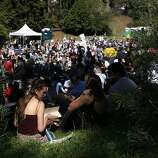 Nellie Graham of Peteluma reads the event program during the Cave Singer performance at the Rooster Stage at the Hardly Strictly Bluegrass Festival in Golden Gate Park, in San Francisco, Ca, on Friday, Oct. 4, 2013.