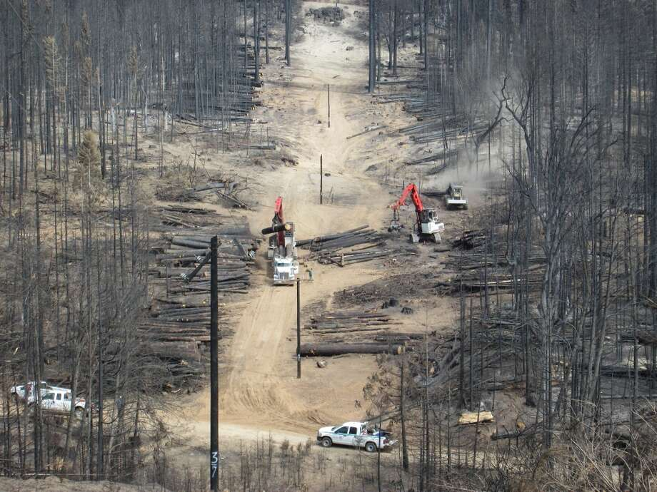 About 15 miles into the interior of the fire, salvage logging operation takes dead trees Photo: Tom Stienstra/The Chronicle