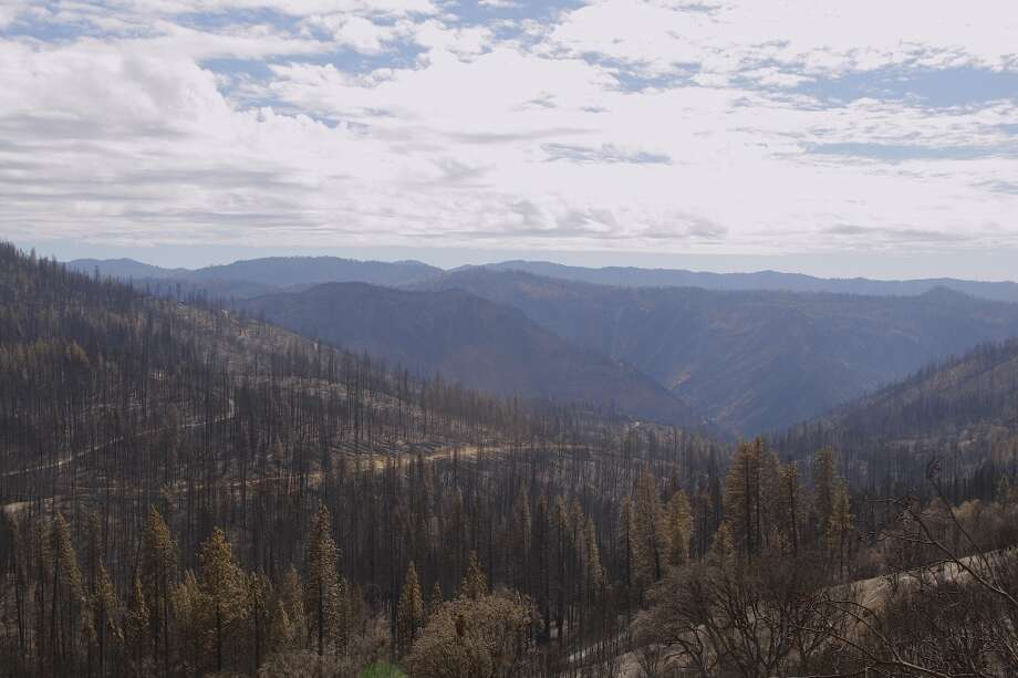 Miles of Stanislaus National Forest burned into Yosemite Wilderness Photo: Tom Stienstra/The Chronicle