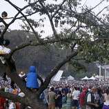Festival goers watch Steve Earle and The Dukes from a tree at the Hardly Strictly Bluegrass Festival in Golden Gate Park, in San Francisco, Ca, on Saturday, Oct. 5, 2013.