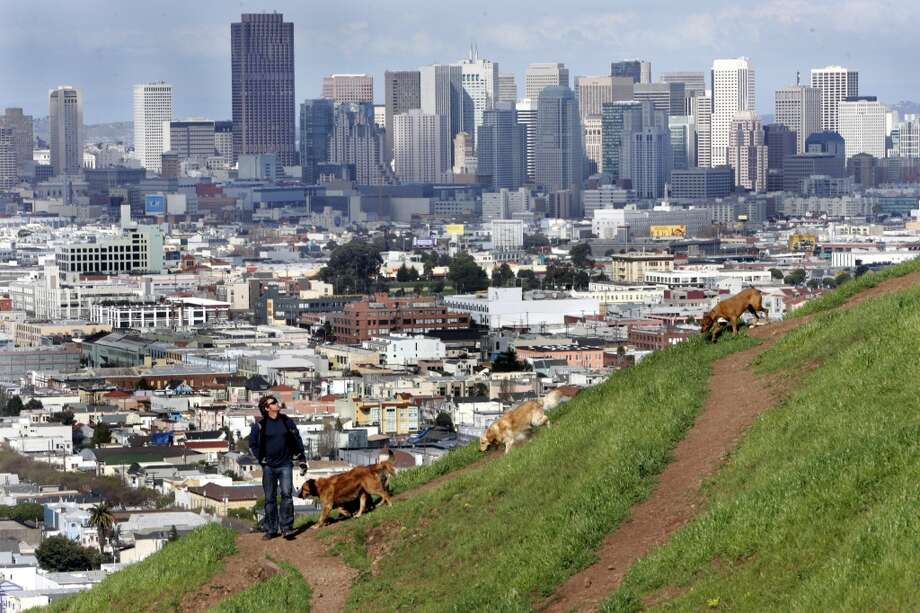 11. BERNAL HEIGHTS PARK. Want to bring your dog along to enjoy the views? Bernal Heights offers 39 acres of off-leash roaming for you and your furry friend with spectacular vantage points along the slopes. Photo: Penni Gladstone, SFC