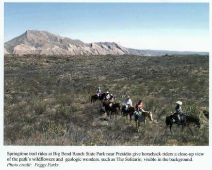 Springtime trail rides at Big Bend Ranch State Park near Presidio give horseback riders a close-up view of the park's wildflowers and geologic wonders, such as The Solitario, visible in the background. HOUCHRON CAPTION (02/14/1999): Trail rides at Big Bend Ranch State Park give horseback riders an up-close view of the park's wildflowers and wildlife. Photo: Peggy Parks, Texas Parks & Wildlife / handout