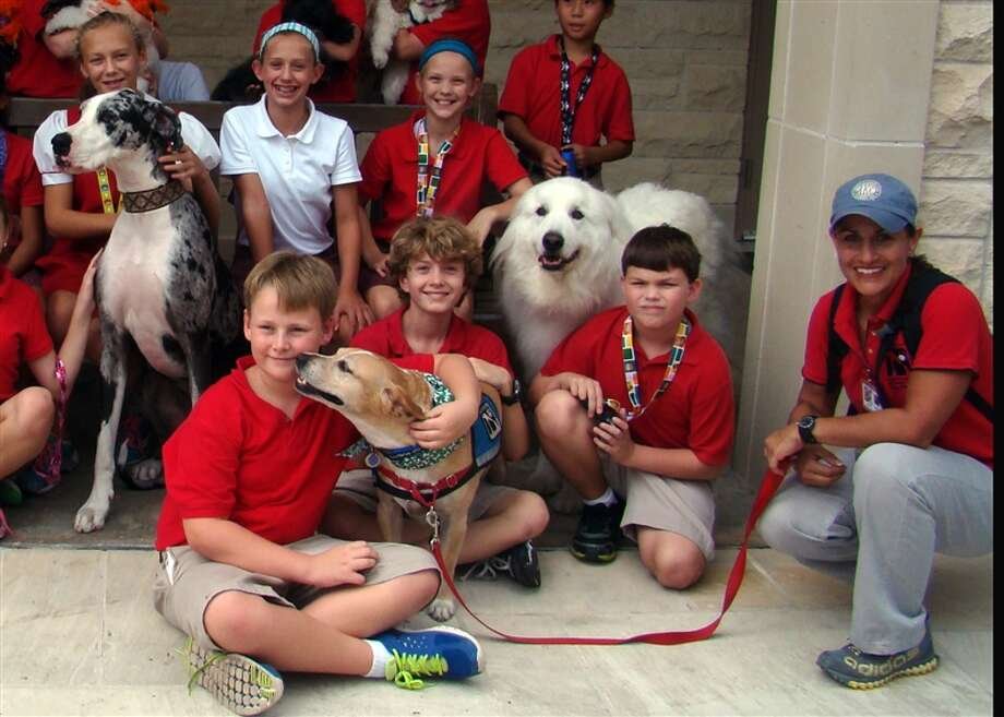 Faithful Paws pet therapy dogs recently visited Mrs. Woods' art class at St. John's School. Photo: Courtesy Of St. John's School