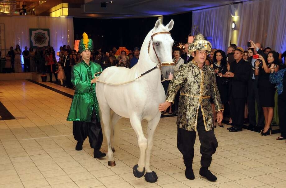 A dancing Lusitano horse makes an appearance at the Houston Ballet Ball Kick-Off party over the ice rink at the Galleria Tuesday Oct. 08,2013.(Dave Rossman photo) Photo: For The Houston Chronicle