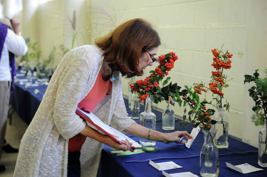 "Elaine Hjelte, of Old Greenwich, judges flowers at the ""50 Shades of....Gardening"", a small standard flower show, at Eastern Greenwich Civic Center, in Old Greenwich, Conn., Wednesday Oct, 9, 2013. The show was presents by Knollwood Garden Club, Riverside Garden Club and the Garden Club of Old Greenwich. Photo: Helen Neafsey / Greenwich Time"