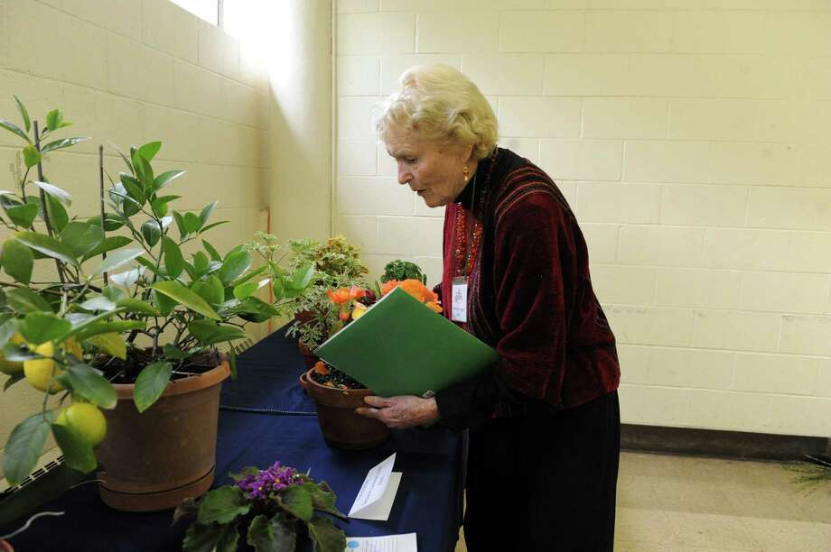 "Barbara Norrgard looks at fruit and flowers at the ""50 Shades of....Gardening"", a small standard flower show, at Eastern Greenwich Civic Center, in Old Greenwich, Conn., Wednesday Oct, 9, 2013. The show was presents by Knollwood Garden Club, Riverside Garden Club and the Garden Club of Old Greenwich. Photo: Helen Neafsey / Greenwich Time"