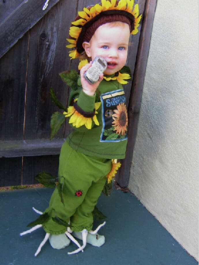 "SUNFLOWER (2007): From father Mark Jobson: ""Here's Lily, who forsook her namesake for another varietal. No, I've never done anything like this. Yes, I gouged myself with needles, and burned myself with the glue gun. Small badges of honor for one yanked-out-by-the-roots Sunflower, with bugs."""