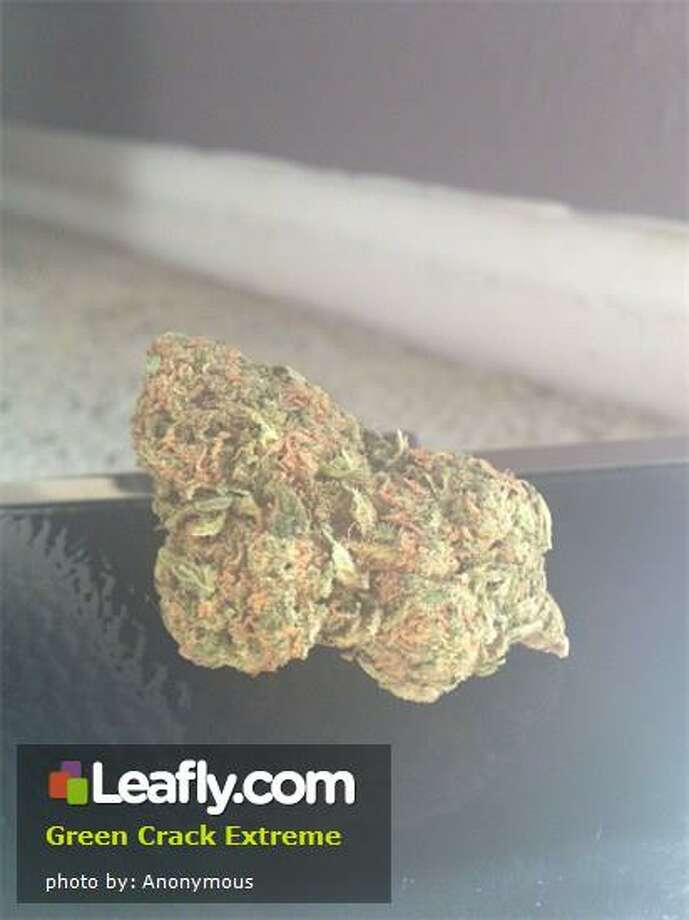 "Here's  how Leafly.com describes the effects of this strain, based on user submissions: Green Crack Extreme - This is the more ""extreme"" sister of the original Green Crack that will leave you with the same creative mental effects but may not leave you quite as focused. Green Crack Extreme's dense buds will be bright green and covered in sugary crystals that fit with its sweet candy smell. Contrary to its extreme name, this strain is helpful in reducing stress and getting inspired. Photo: Courtesy Of Leafly.com"
