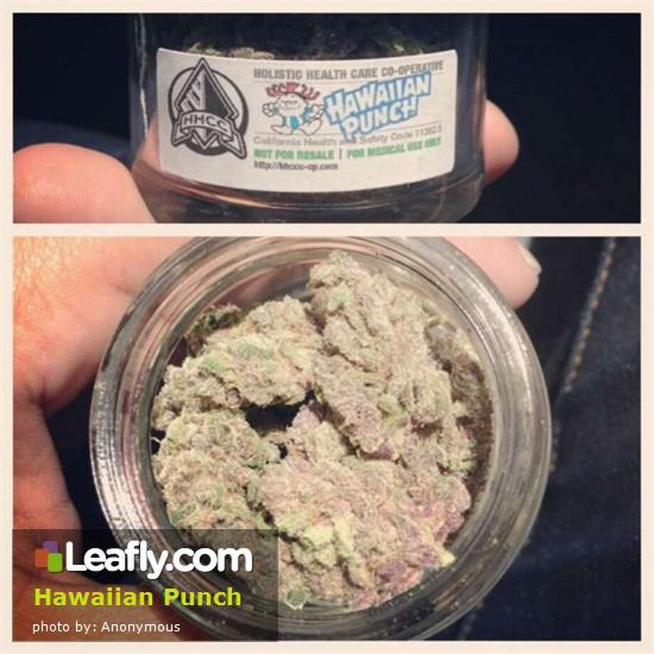 """Here's  how Leafly.com describes the effects of this strain, based on user submissions:Hawaiian Punch - Originating in Hawaii, Hawaiian Punch delivers a """"punch"""" not unlike the most righteous wave in Hawaii. This strain is extremely potent, yet delivers an aloha feeling to your mind and body, much like an ocean breeze. Hawaiian Punch is one that will gradually sneak up on you, especially the first time.  Flowering time is 55-60 days, and a THC content up to 21%. Photo: Courtesy Of Leafly.com"""