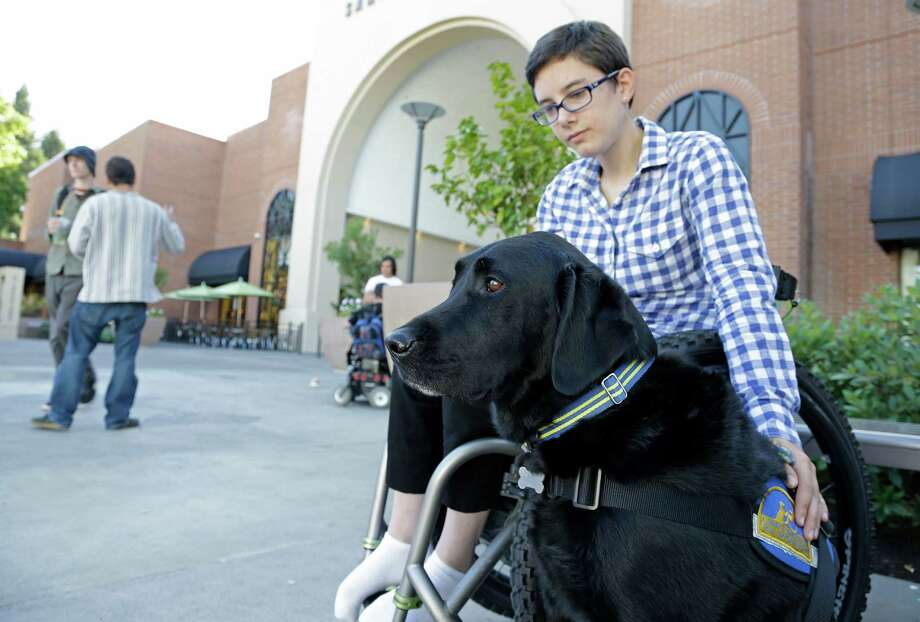 "In this photo taken Tuesday, Oct. 8, 2013, Wallis Brozman sits with her service dog Caspin outside a shopping mall in Santa Rosa, Calif. Other victims of unruly fake service dogs are real service dogs, said Brozman, 27, of Santa Rosa. She has dystonia, a movement disorder that left her unable to walk and barely able to talk. She needs a wheelchair, voice amplifier and her service dog who responds to English and sign language. ""When my dog is attacked by an aggressive dog, he is not sure what to do about it and looks to me. It becomes a safety issue, not only for my dog, the target of the attack, but me if I am between the dogs,"" Brozman said. (AP Photo/Eric Risberg)  ORG XMIT: CAER101 Photo: Eric Risberg / AP"