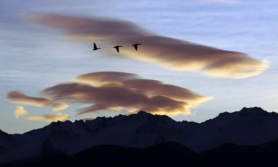 Birds are silhouetted against the wind-sculpted clouds lingering above the Chugach Mountains in Anchorage, Alaska. Photo: Erik Hill, Associated Press