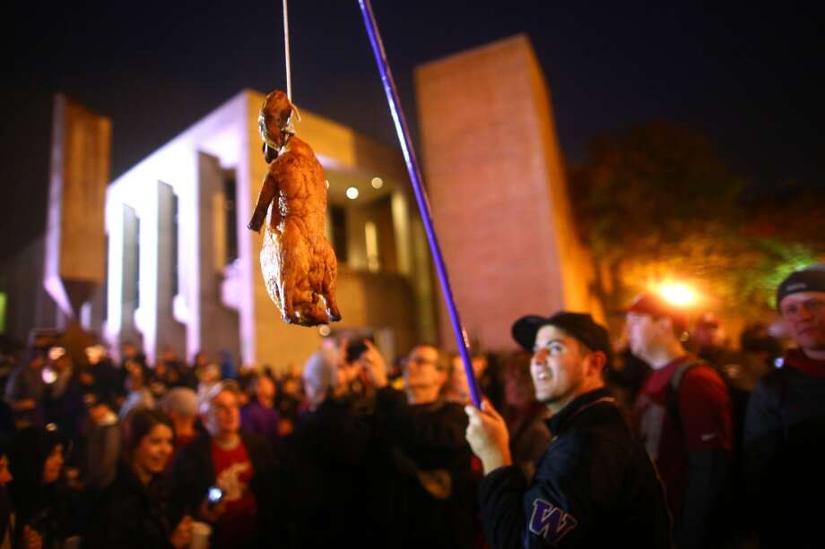 A UW fan holds a roasted duck during a broadcast of ESPN's College Game Day in Red Square on the University of Washington campus. It was the first time the popular show has been broadcast from Seattle. Photographed on Saturday, October 12, 2013.  (Joshua Trujillo, seattlepi.com) Photo: JOSHUA TRUJILLO, SEATTLEPI.COM