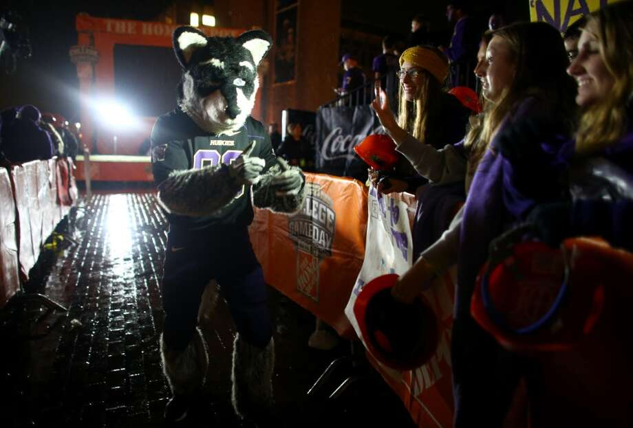 The UW mascot greets fans during a broadcast of ESPN's College Game Day in Red Square on the University of Washington campus. It was the first time the popular show has been broadcast from Seattle. Photographed on Saturday, October 12, 2013.  (Joshua Trujillo, seattlepi.com) Photo: SEATTLEPI.COM