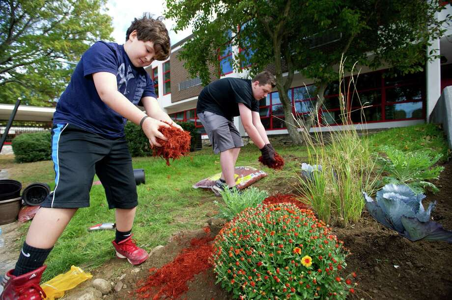 Dante Ayars, 9, left, and his brother, Nick, 12, right, spread mulch during a clean-up at Turn of River Middle School in Stamford, Conn., on Saturday, October 12, 2013, to prepare the courtyard for a dedication to Carol Pavia, who worked in the office at the school and died in 2012. Photo: Lindsay Perry / Stamford Advocate