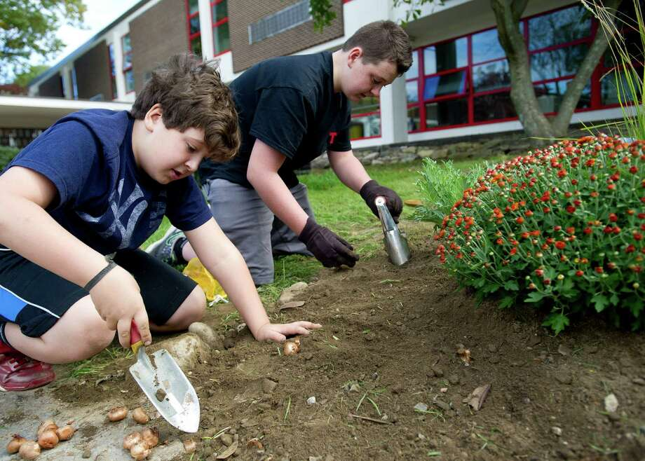 Dante Ayars, 9, left, and his brother, Nick, 12, right, plant bulbs during a clean-up at Turn of River Middle School in Stamford, Conn., on Saturday, October 12, 2013, to prepare the courtyard for a dedication to Carol Pavia, who worked in the office at the school and died in 2012. Photo: Lindsay Perry / Stamford Advocate