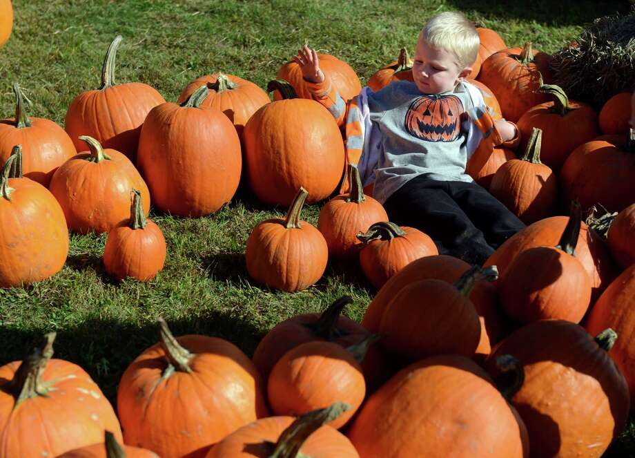 Connor Michels, 4, of Milford, takes a rest on his quest for the perfect pumpkin during the Boys and Girls Club of Milford's Pumpkins on the Pier fall festival Saturday, Oct. 12, 2013 at Walnut Beach in Milford, Conn. Photo: Autumn Driscoll / Connecticut Post
