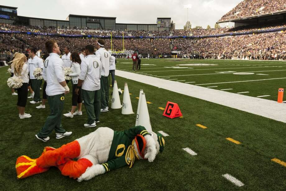 The Oregon Duck takes on a miserable position on the sidelines during the first half of a game against UW on Saturday, Oct. 12, 2013, at Husky Stadium in Seattle. Ducks led the Huskies 21-7 at the half. The Oregon Ducks stand at 5-0 against the Washington Huskies, 4-1, so far in the season to date. (Jordan Stead, seattlepi.com) Photo: JORDAN STEAD, SEATTLEPI.COM