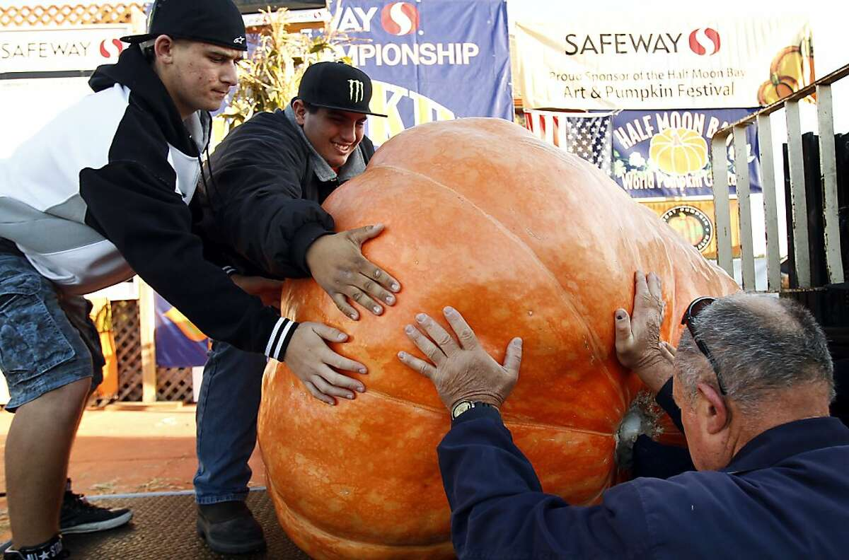 Volunteers load a pumpkin onto the scales at the 40th Annual Safeway World Championship Pumpkin Weigh-Off in Half Moon Bay, Calif., on Monday, October 14, 2013. The heaviest pumpkin weighed in at 1,985 pounds, which was not enough to break the world record set on Saturday.