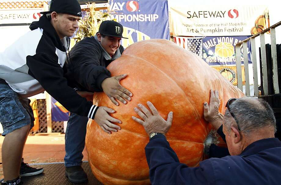 Volunteers load a pumpkin onto the scales at the 40th Annual Safeway World Championship Pumpkin Weigh-Off in Half Moon Bay, Calif., on Monday, October 14, 2013.  The heaviest pumpkin weighed in at 1,985 pounds, which was not enough to break the world record set on Saturday. Photo: Sarah Rice, Special To The Chronicle