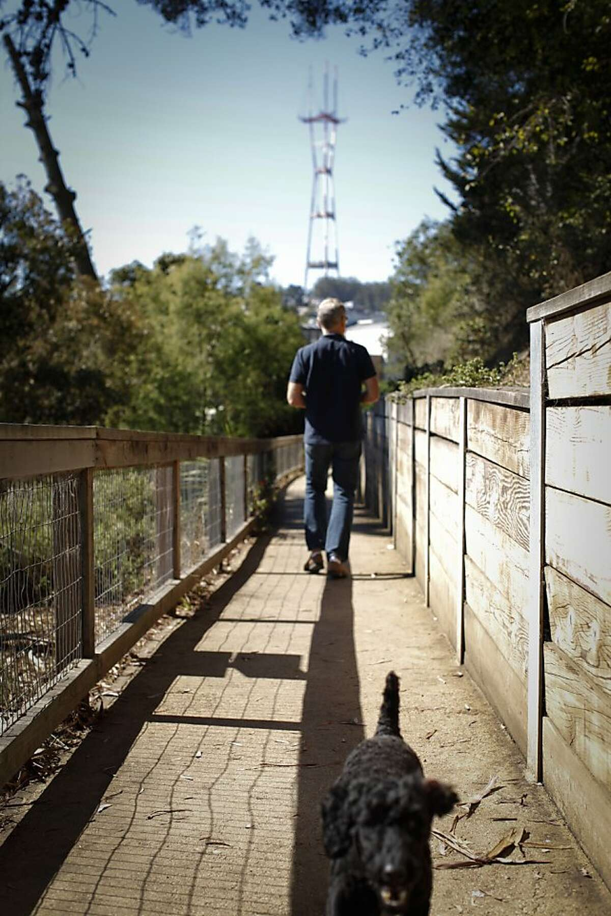 A man walks his dog on a path with a view of Sutro Tower in Buena Vista Park on Thursday, Sep. 26, 2013 in San Francisco, Calif.